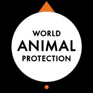 World animal protection, Ethiek, Maatschappelijk verantwoord werken, MVO
